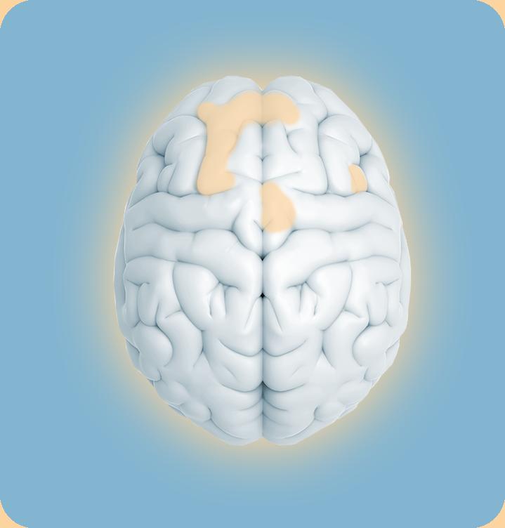Analyse de l'activité cérébrale