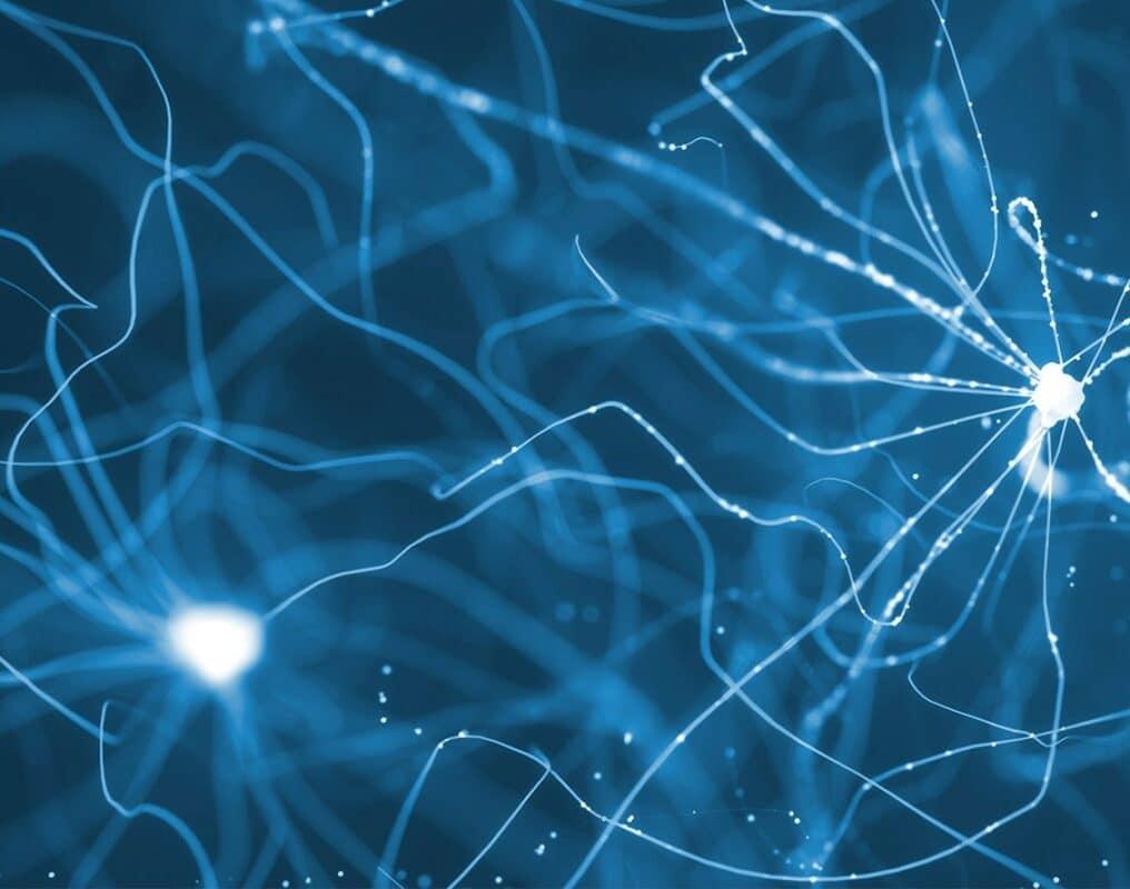 Melomind_Visuel_Neuronale-2